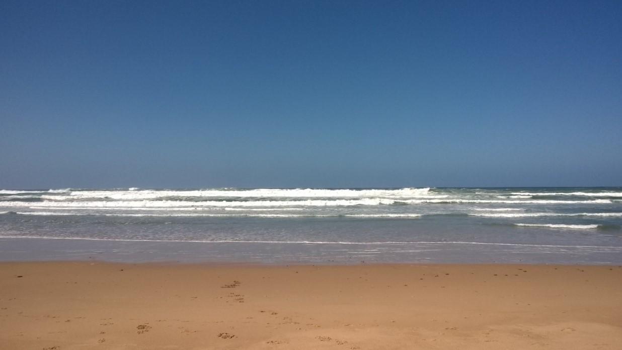 The Ocean - Meditation